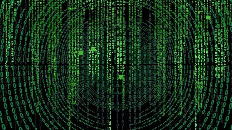 Le spine digitali